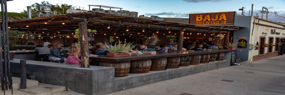 Cabo Art and Beer Tour