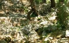 Castalian spring