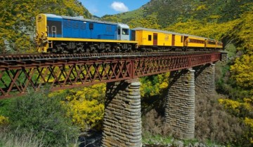 A picture of Dunedin Shore Excursion: Queenstown/Akaroa & Taieri Gorge Railway