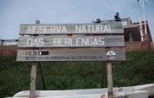 Berlengas Natural Reserve