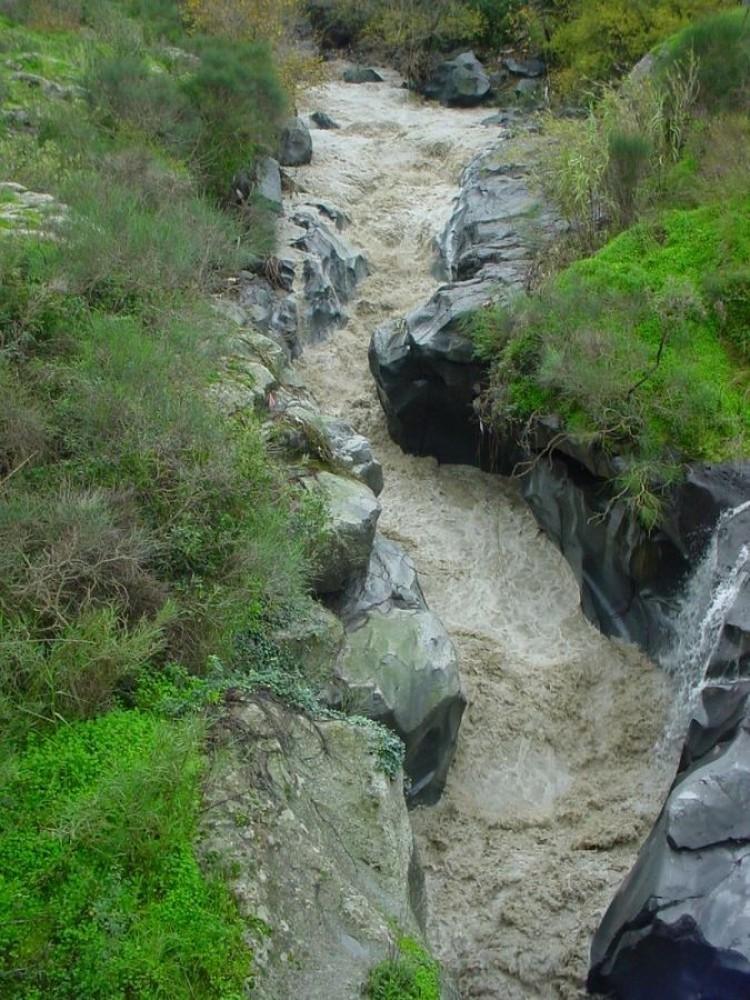 Alcantara (river)