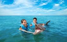 Playa Mujeres Delphinus: Couples Dreams