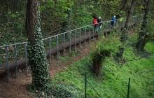 Private Prague: Parks and Views Tour