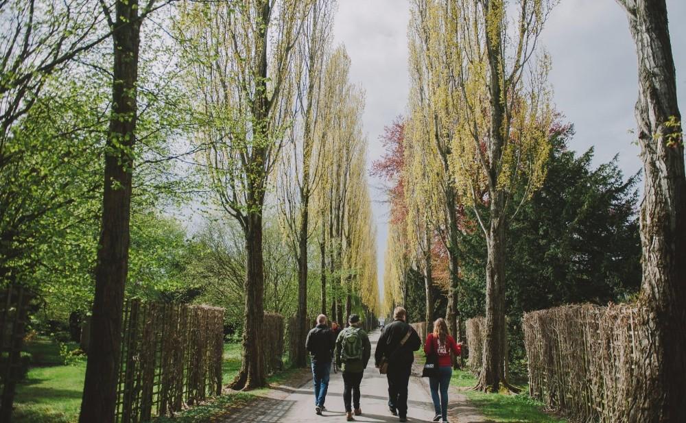 Private Norrebro Neighborhood Tour
