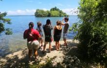 Private Samaná Bay Expedition