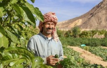 Egyptian Farming 101 with Local Community