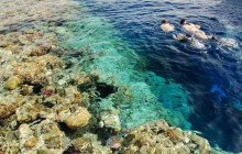 Egyptian Snorkel Adventure from Dahab