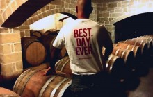 From Stomp To Sip! Vineyard and Harvest Experience