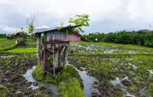 Small Group Hidden Rice Terraces Trek