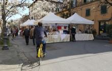 Private Lucca Bikes & Bites