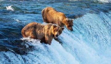 A picture of Explore Alaska 9D/8N