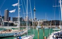 Electric Bike Ride Tour around Auckland