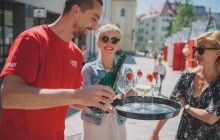Bratislava and Vienna In One Day by Boat