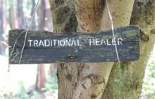 In Focus: Traditional Doctor + Medicine Tour