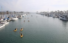 Orange Country Total Tour - Dana Point & Huntington Beach