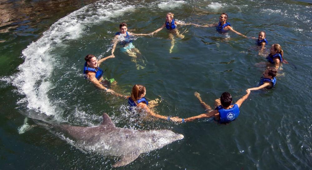 Riviera Maya Delphinus: Dolphin Ride