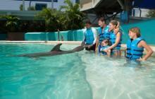Interactive Aquarium Cancun: Ride