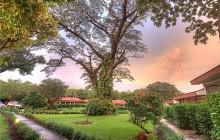 Hacienda Guachipelín
