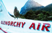 Milford Sound And Glaciers: Landing