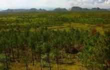 Bladen Nature Reserve