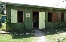 Community Baboon Sanctuary