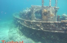 Wreck Dive Safari Tour To Tugboat & Superior Producer